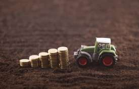 Rules and Developments in Agriculture Taxation