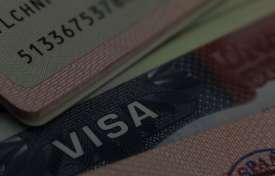 Payroll Visa Non-Immigration Updates