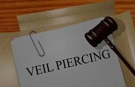 Piercing the LLC Veil