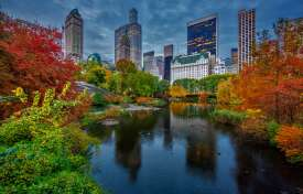 City Parks and Open Air Spaces - Urban Design Considerations