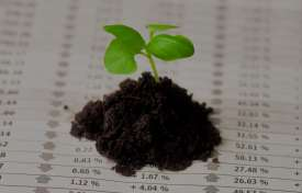 Reading and Understanding Soil Reports