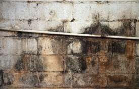 Solving Water Intrusion and Mold Problems