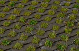 Pervious Pavement Best Practices