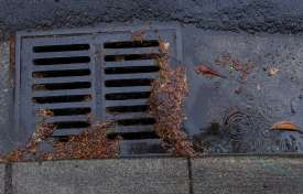 Storm Water Permitting Compliance for Municipalities and Businesses