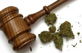 California's New Marijuana Law: How Does It Impact Employers?