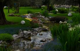 Design Tips for Rain Gardens: Storm Water and Runoff Control