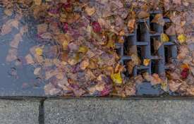 Storm Water Best Management Practices Inspections and Maintenance