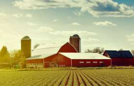 Estate Plan Fundamentals for Farmers