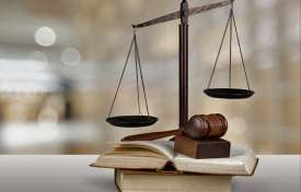 A Professional's Guide to Forensic Social Work and the Courts