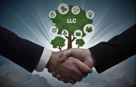 Strategic Planning for LLC's and Estate Planning